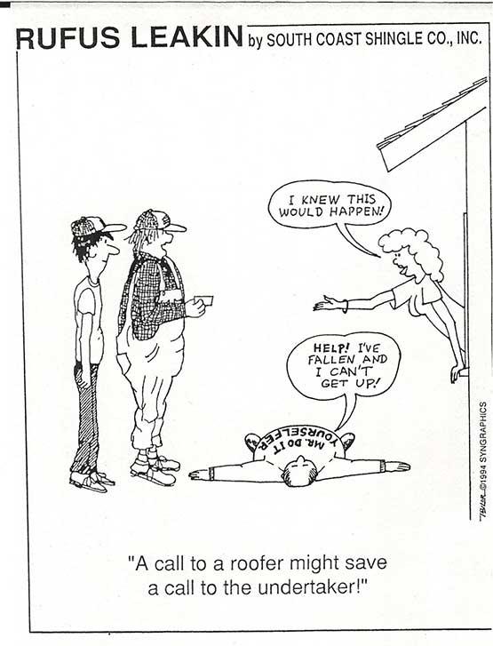 Rufus Cartoons South Coast Shingle